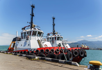 Marine tug stands near the pier