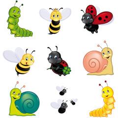 Buntes Insekten Set