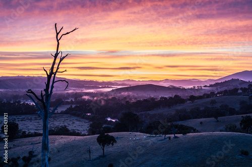 obraz PCV Kolorowe wschód słońca nad zamglonym dolinie w Australii