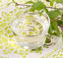 isolated a transparent cup of birch juice with birch leaves