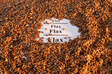 Pile of Flax-seeds with their Latin and English name.