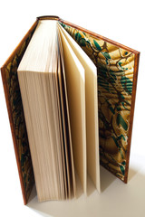 A slightly open book displayed on a white background