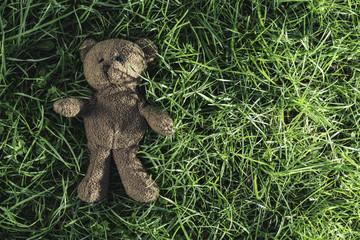 Teddy bear on the grass