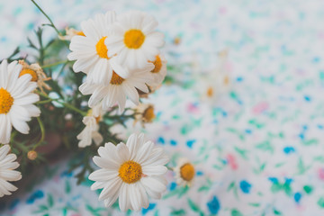 Bouquet of chamomile and daisy's of field series