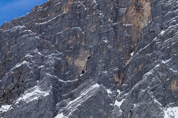 Detail Dachstein Massiv