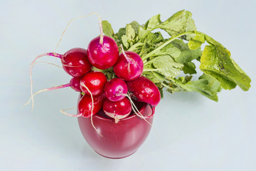 Radishes in a red bowl in a studio shot