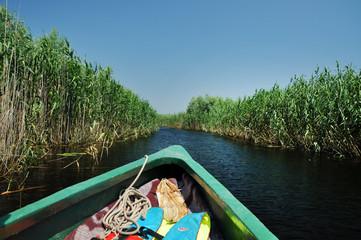 Exploring Danube delta with a boat