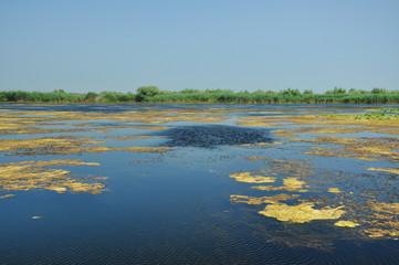 Lake in the Danube delta, Romania