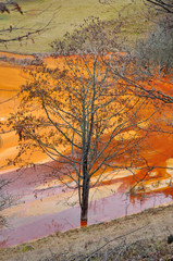 Waste water pollution of a copper mine. Geamana, Rosia Montana,