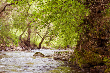River and forrest with visible movement and blur of the water