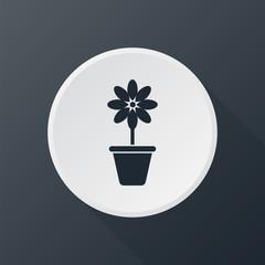 icon vazon