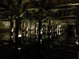 Reflejos en las Columnas - 2