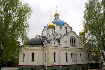 Orthodox Monastery of the Holy -Elisavetinsky