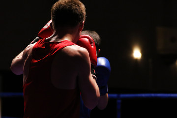 Boxer is back in the dark