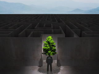 man with tree in front of a huge maze,eco concept