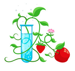 GMO genetically modified foods growing in test-tube. Eps10