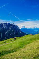 Pascoli di montagna sulle dolomiti all'alpe di Siusi