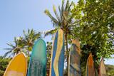 Surfboards at beach Praia Lopes Mendes, Ilha Grande Brazil - Fine Art prints