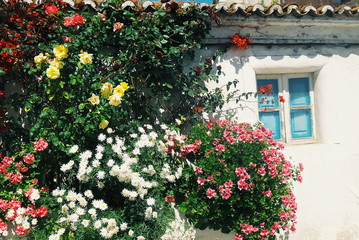 Flowers in facade of Portuguese house