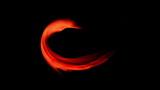 Red Circular Motion