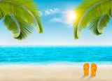 Fototapety Vacation background. Beach with palm trees and blue sea. Vector.