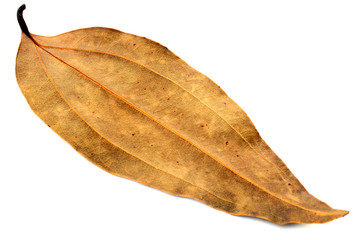 Dried cassia leaf