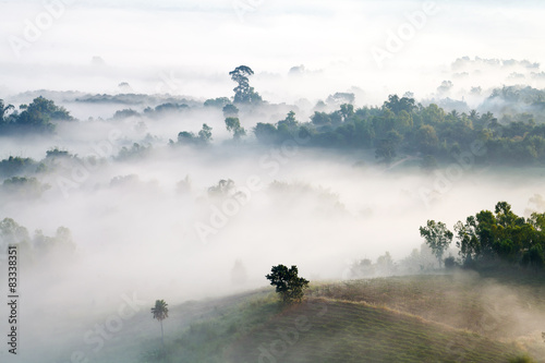 misty morning sunrise in mountain at Khao-kho Phetchabun,Thailan © Sarote