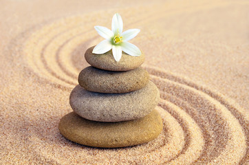 Stone balance and flower on the sand