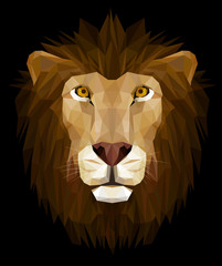 Low poly design, illustration of lion head.