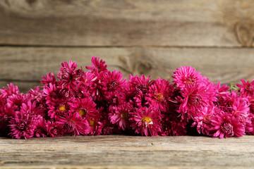 Beautiful purple chrysanthemums on grey wooden background