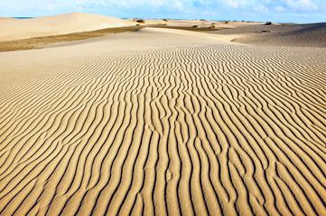 Sandy dunes of Maspalomas. Gran Canaria. Canary Islands.