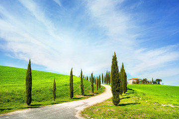 Landscape of countryside in Val d'Orcia province.Tuscany, Italy.