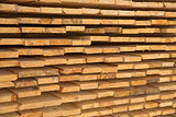 Wooden timber at a sawmill - 83360301