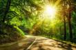Stimmungsvolle Straße im Wald