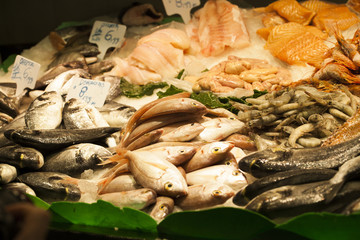 Fresh seafood in the fish market