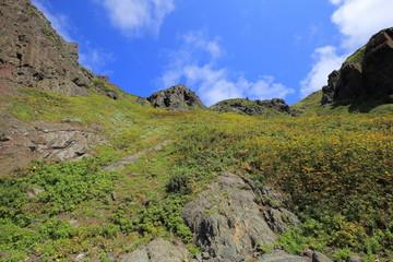 Cliff in Rebun island, Hokkaido, Japan