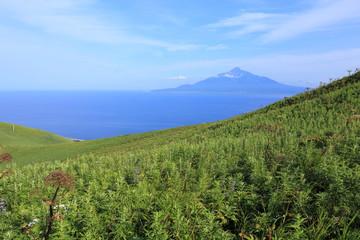 Beautiful scenery at Rebun island, Hokkaido, Japan
