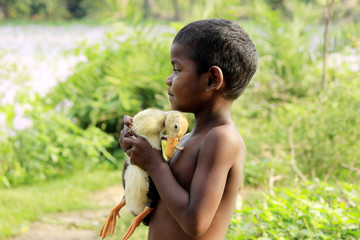 Fatherly feeling- embracing the duckling.
