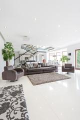 Spacious living room in huge property