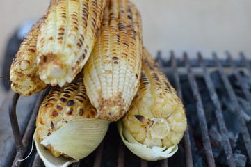 Grilled corn sold on the street of Copan Ruinas town