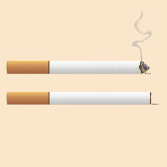 Realistic isolated cigarette with burn and smoke