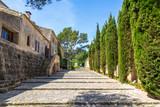 Mallorca - Spain - 83414197