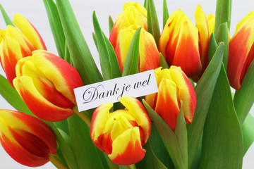 Dank je wel (thank you in Dutch) with colorful tulips