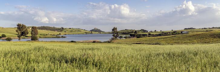 Panoramica, campo de trigo verde con lago y castillo al fondo