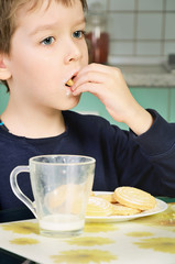 little boy eating cookies, sitting at the dinner table. vertical