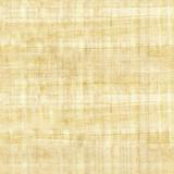 Fototapety papyrus texture - seamless pattern - ridged surface