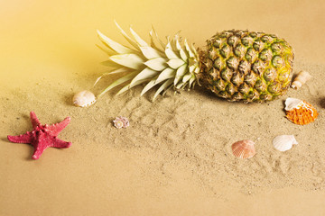 Pineapple and seashells on sand on the beach concept