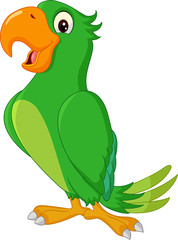 Cartoon cute parrot