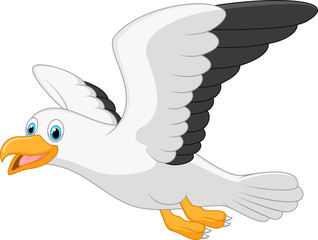 Cartoon smiling seagull on white background