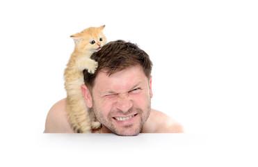 Kitten grabbed the man's head on white background